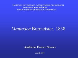 Mantodea Burmeister, 1838