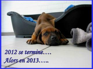 2012 se termine . Alors en 2013 ..