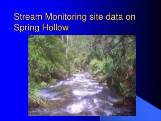 Stream Monitoring site data on Spring Hollow