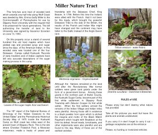 Miller Nature Tract