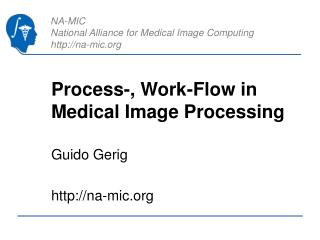 Process-, Work-Flow in Medical Image Processing