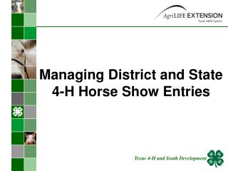 Managing District and State 4-H Horse Show Entries
