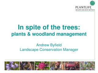 In spite of the trees: plants  woodland management   Andrew Byfield Landscape Conservation Manager
