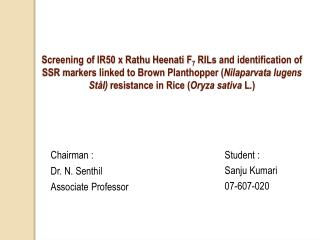 Screening of IR50 x Rathu Heenati F7 RILs and identification of SSR markers linked to Brown Planthopper Nilaparvata luge