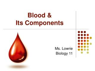 Blood   Its Components