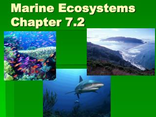 Marine Ecosystems Chapter 7.2