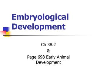 Embryological Development