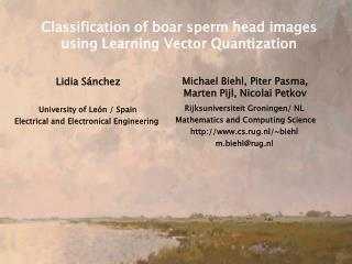 Classification of boar sperm head images using Learning Vector Quantization