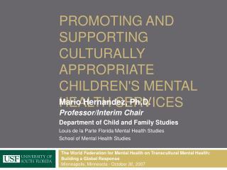 Promoting and supporting Culturally Appropriate Childrens Mental Health Services