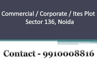 for sale 2000 sq mtr corporate plot noida 9910008816