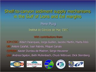 Shelf-to-canyon sediment supply mechanisms in the Gulf of Lions and Eel margins