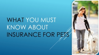 What You Must Know About Insurance For Pets