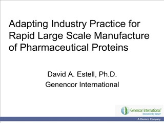 adapting industry practice for rapid large scale manufacture of pharmaceutical proteins