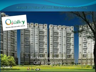 Invest in Amrapali O2 Valley Flats in Noida Extension at Bes