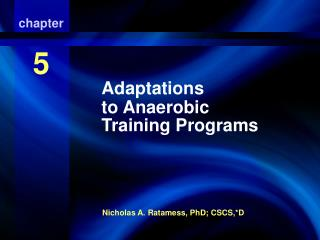 adaptations to anaerobic training programs