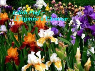 Edith Piaf    L Hymne   l Amour