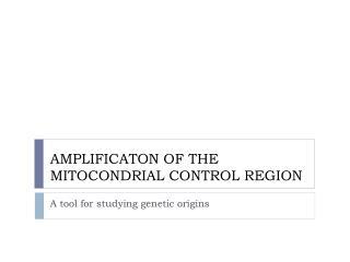 AMPLIFICATON OF THE MITOCONDRIAL CONTROL REGION