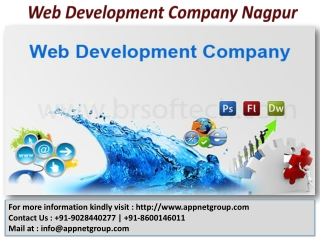 Web Development Company Nagpur