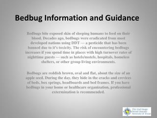 Bedbug Information and Guidance
