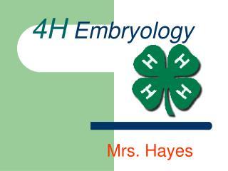 4H Embryology