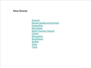 cheviot  dorset polled and horned  hampshire  montadale  north country cheviot  oxford  shropshire  southdown  suffolk