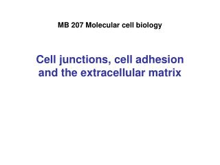 MB 207 Molecular cell biology