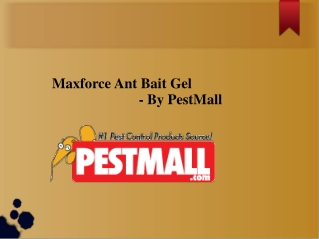 Maxforce Ant Bait Gel