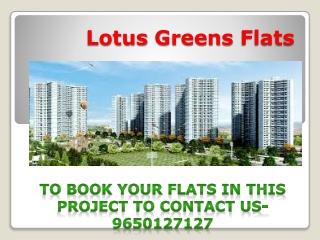 Lotus greens flats