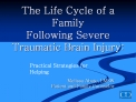the life cycle of a family following severe traumatic brain injury:
