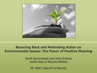 Bouncing Back and Motivating Action on Environmental Issues: The Power of Positive Meaning