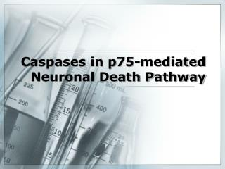 Caspases in p75-mediated Neuronal Death Pathway