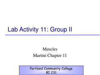 Lab Activity 11: Group II