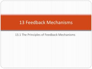 13 Feedback Mechanisms