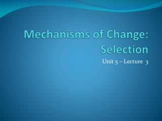 Mechanisms of Change: Selection