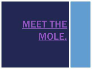 Meet the Mole.