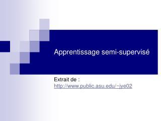 Apprentissage semi-supervis