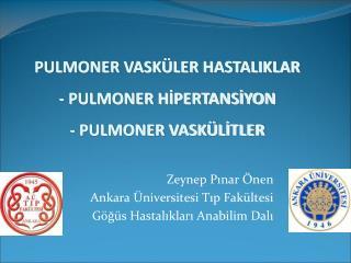 Zeynep Pinar  nen Ankara  niversitesi Tip Fak ltesi  G g s Hastaliklari Anabilim Dali