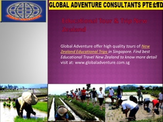 High Quality New Zealand Educational Tours Service in Singap