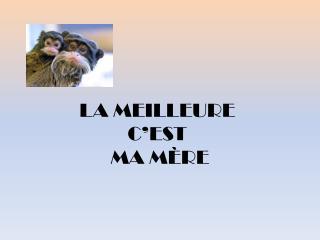 LA MEILLEURE C EST  MA M RE