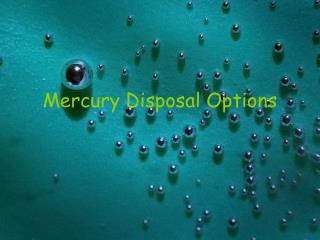 Mercury Disposal Options