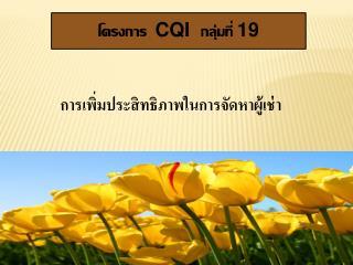 CQI   19 , ,