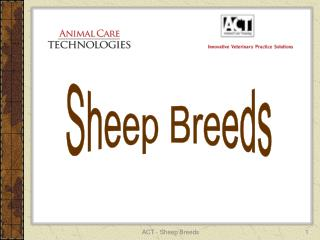 ACT - Sheep Breeds