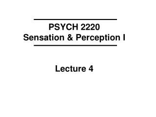 PSYCH 2220 Sensation  Perception I   Lecture 4