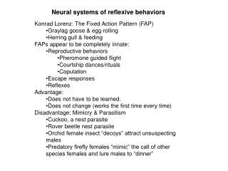 Neural systems of reflexive behaviors