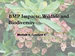 BMP Impacts: Wildlife and Biodiversity