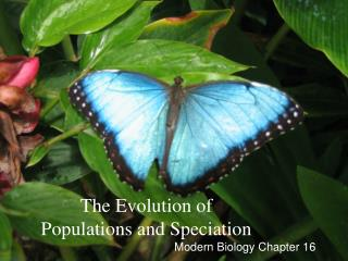 The Evolution of Populations and Speciation