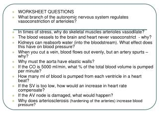 WORKSHEET QUESTIONS What branch of the autonomic nervous system regulates vasoconstriction of arterioles    In times of