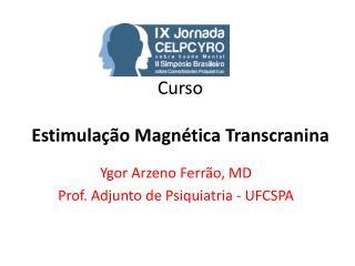 Curso   Estimula  o Magn tica Transcranina