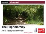 The Pilgrims Way  A bite sized piece of history