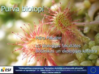 Mara Pakalne LU Biologijas fakultates  Botanikas un ekologijas katedra